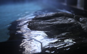 伊東随一の温泉を体の中と外から